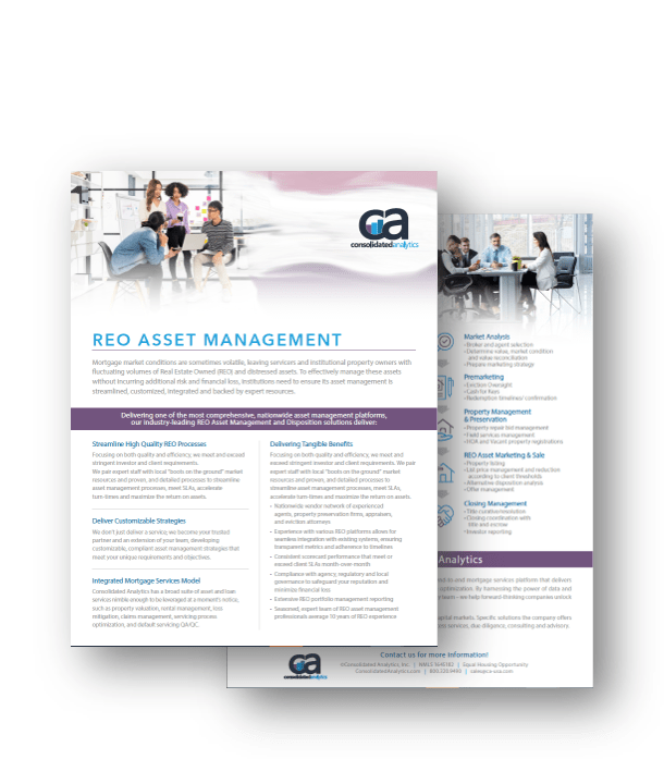 REO Asset Management