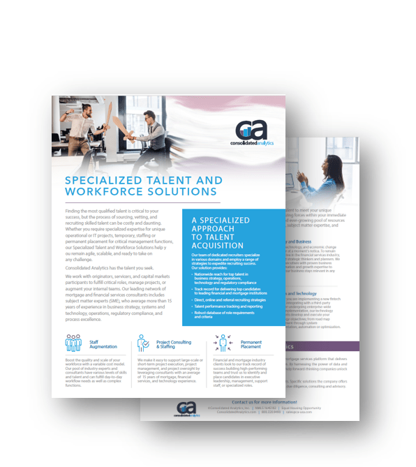 Specialized Talent and Workforce Solutions